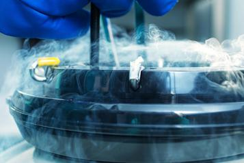 Gamete and Embryo Cryopreservation